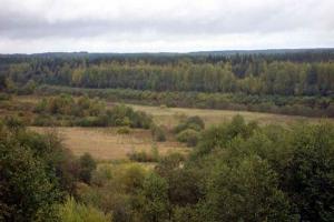 Чухломской край